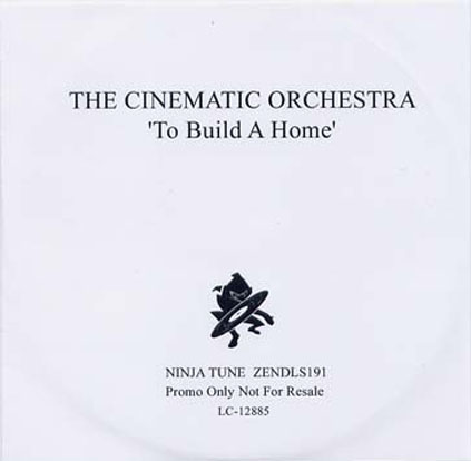 The Cinematic Orchestra - To Build A Home (cover)